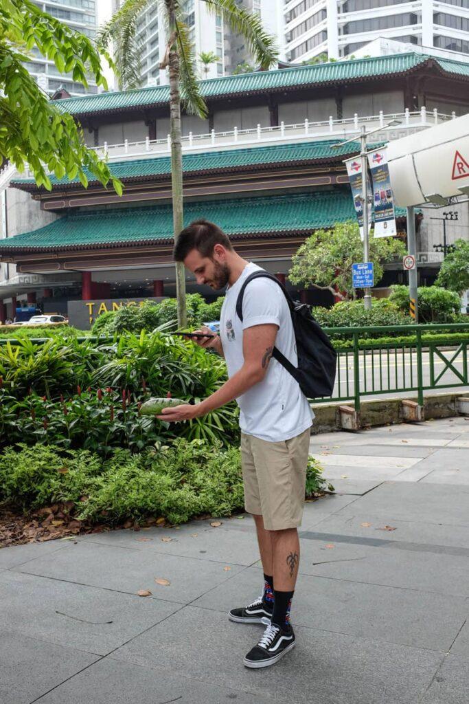 singapore-guida-cosa-vedere-11